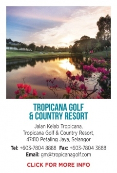 Tropicana-GCR.jpg-nggid0274-ngg0dyn-240x500x100-00f0w010c010r110f110r010t010